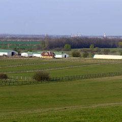 Röjtökmuzsaj: Nagy lovasudvar Sopron mellett