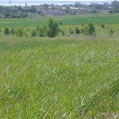 Cserszegtomaj: Huge building plot for developers. Lake view.