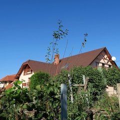 Vasvár: Detached house above the rooftops. Unobstructable panorama view.